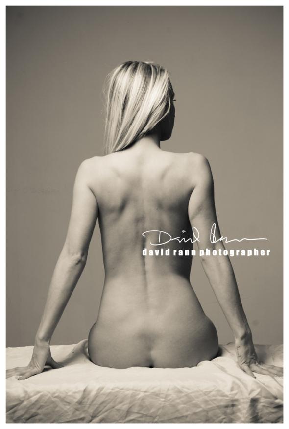 Copyright David Rann 2012